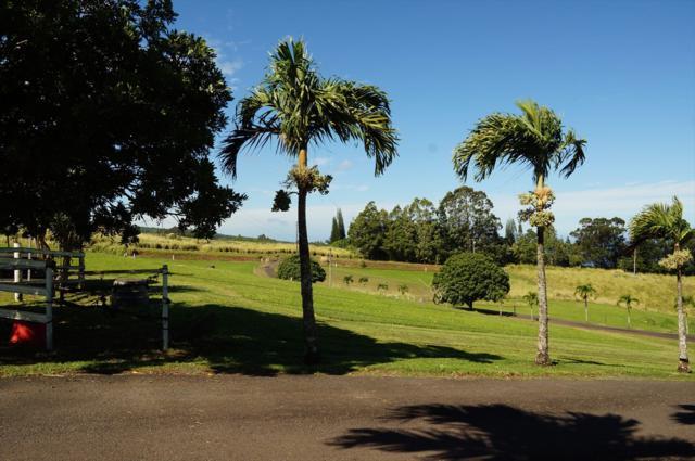 35-349 Kihalani Homestead Rd, Papaaloa, HI 96780 (MLS #622721) :: Elite Pacific Properties