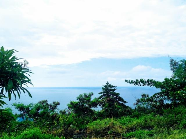 Fern Rd, Captain Cook, HI 96704 (MLS #622879) :: Elite Pacific Properties