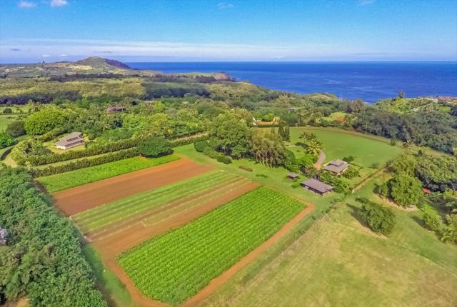 4235 N Waiakalua Road, Kilauea, HI 96754 (MLS #622880) :: Kauai Real Estate Group