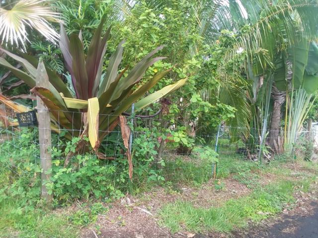 79-7586 Hawaii Belt Rd, Kealakekua, HI 96750 (MLS #622894) :: Aloha Kona Realty, Inc.