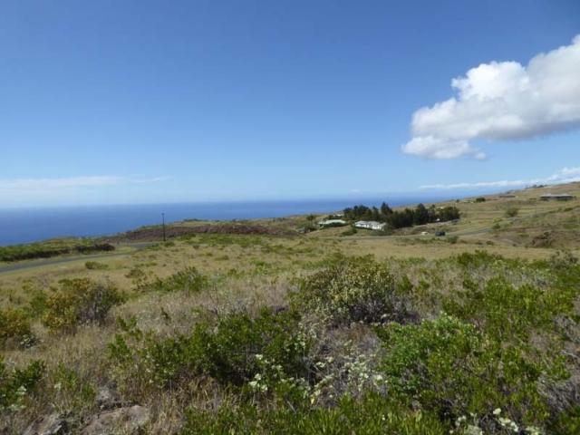 59-109 Ka Nani Place, Kamuela, HI 96743 (MLS #622919) :: Aloha Kona Realty, Inc.