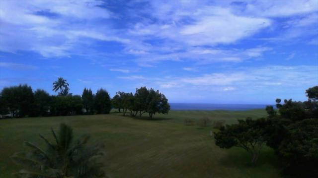 3875--3 Kamehameha Rd, Princeville, HI 96722 (MLS #622978) :: Kauai Exclusive Realty