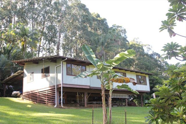 34-1066 Honomainoa Rd, Papaaloa, HI 96780 (MLS #622986) :: Elite Pacific Properties