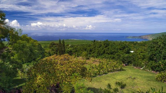 83-5602 Middle Keei Rd, Captain Cook, HI 96704 (MLS #623022) :: Oceanfront Sotheby's International Realty