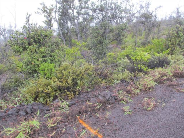 Address Not Published, Ocean View, HI 96737 (MLS #623060) :: Aloha Kona Realty, Inc.