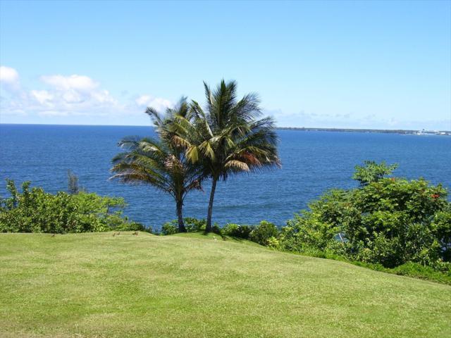 27-108 Hikina Pl, Hilo, HI 96720 (MLS #623064) :: Aloha Kona Realty, Inc.