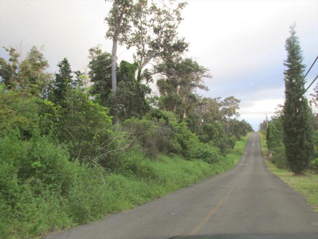 Tiki Ln, Ocean View, HI 96737 (MLS #623070) :: Aloha Kona Realty, Inc.