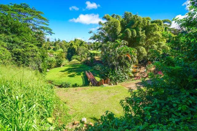 47 Kaluamakua Pl, Kilauea, HI 96754 (MLS #623097) :: Elite Pacific Properties