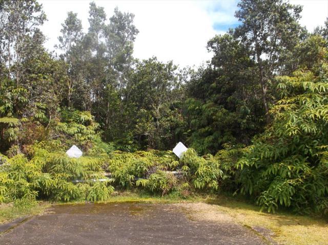 Address Not Published, Volcano, HI 96785 (MLS #623166) :: Oceanfront Sotheby's International Realty