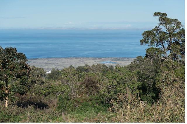 75-5424 Nanaina Pl, Holualoa, HI 96725 (MLS #623179) :: Aloha Kona Realty, Inc.
