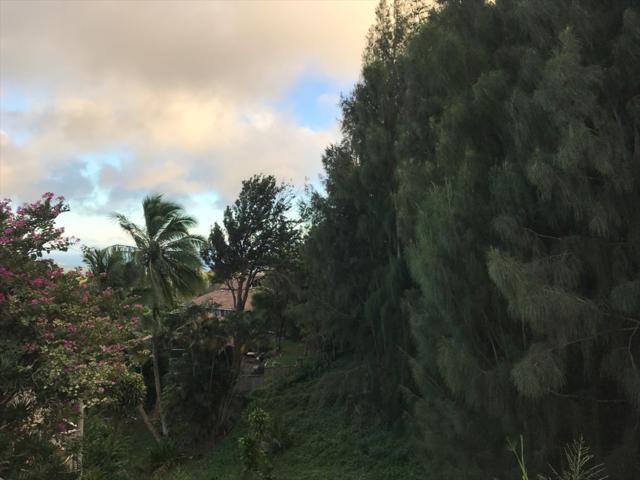 4260 Kai Ikena Dr, Kalaheo, HI 96741 (MLS #623204) :: Kauai Real Estate Group