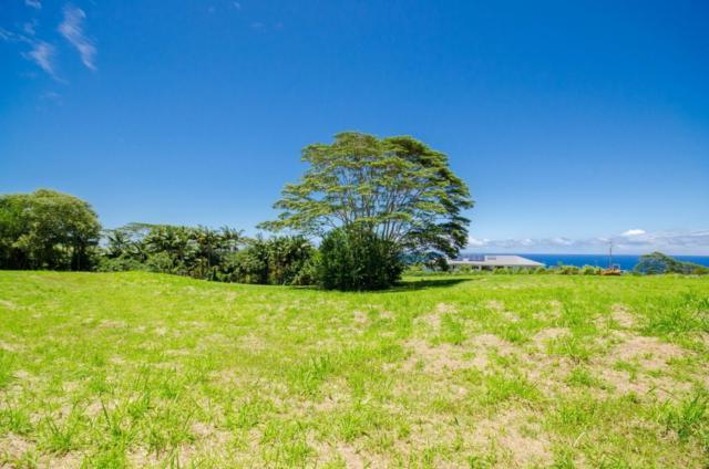Address Not Published, Pepeekeo, HI 96783 (MLS #623226) :: Aloha Kona Realty, Inc.