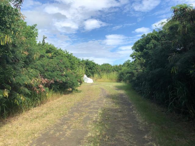 Pua St, Naalehu, HI 96772 (MLS #623379) :: Aloha Kona Realty, Inc.