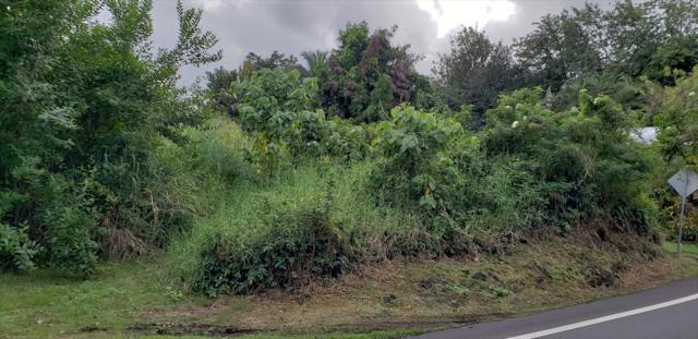 1139 Kaumana Dr, Hilo, HI 96720 (MLS #623397) :: Song Real Estate Team/Keller Williams Realty Kauai