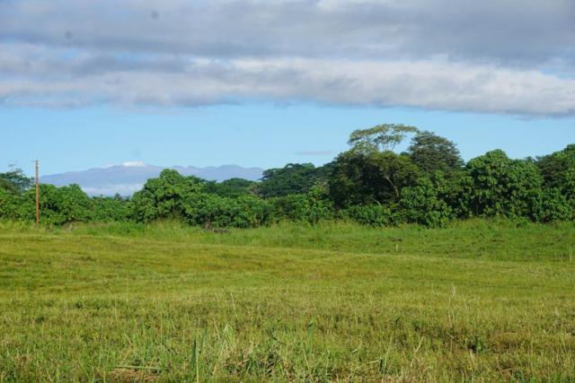 Mamaka St, Keaau, HI 96749 (MLS #623411) :: Song Real Estate Team/Keller Williams Realty Kauai