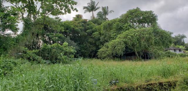 Address Not Published, Hilo, HI 96720 (MLS #623413) :: Aloha Kona Realty, Inc.