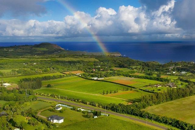 4469-W N Waiakalua Rd, Kilauea, HI 96754 (MLS #623459) :: Kauai Real Estate Group