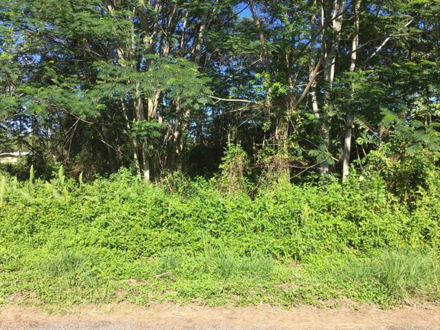 8TH AVE, Keaau, HI 96749 (MLS #623481) :: Elite Pacific Properties