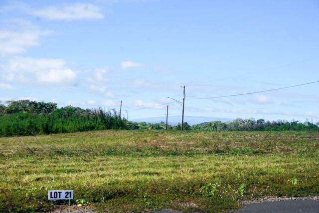 Ohiohi St, Keaau, HI 96749 (MLS #623613) :: Song Real Estate Team/Keller Williams Realty Kauai