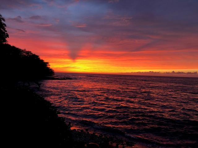 69-1766 Puako Beach Dr, Kamuela, HI 96743 (MLS #623620) :: Oceanfront Sotheby's International Realty