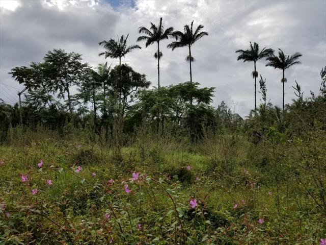 N Leilani Blvd, Pahoa, HI 96778 (MLS #623629) :: Aloha Kona Realty, Inc.