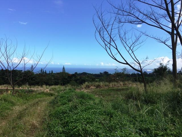 Address Not Published, Papaikou, HI 96781 (MLS #623632) :: Elite Pacific Properties