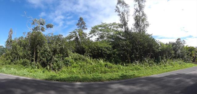 15TH AVE, Keaau, HI 96749 (MLS #623717) :: Song Real Estate Team/Keller Williams Realty Kauai
