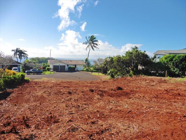 3930 Kilohana St, Kalaheo, HI 96741 (MLS #623769) :: Kauai Real Estate Group