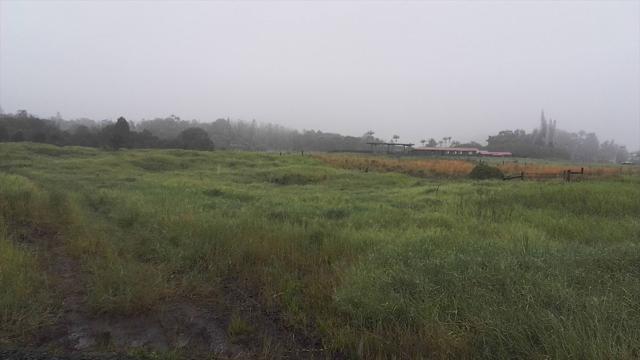 Kulaloa Road, Hilo, HI 96720 (MLS #623782) :: Oceanfront Sotheby's International Realty
