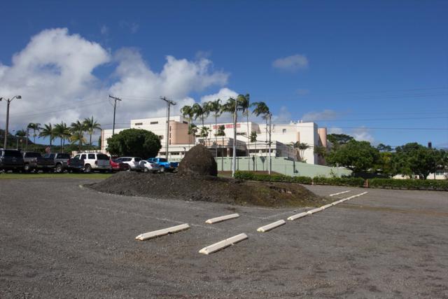 1205 Waianuenue Ave, Hilo, HI 96720 (MLS #623797) :: Aloha Kona Realty, Inc.
