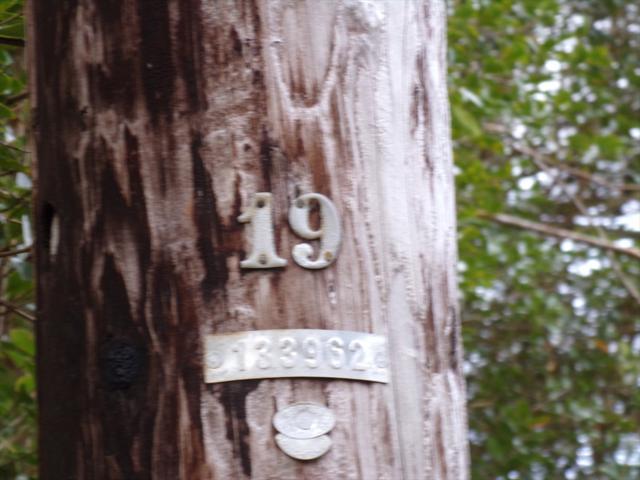 Address Not Published, Mountain View, HI 96771 (MLS #623803) :: Aloha Kona Realty, Inc.