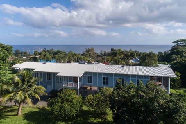 28-3515 Honomu Ln, Honomu, HI 96728 (MLS #623891) :: Song Real Estate Team/Keller Williams Realty Kauai