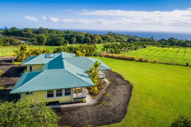 27-380 Indian Tree Rd, Papaikou, HI 96781 (MLS #623990) :: Elite Pacific Properties