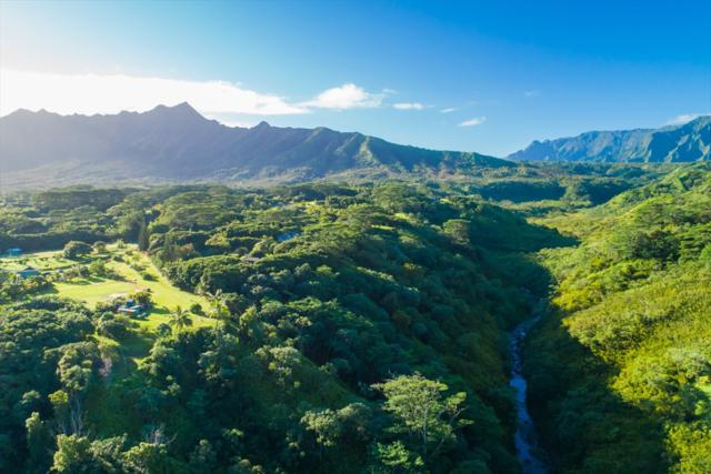 Address Not Published, Kilauea, HI 96754 (MLS #624068) :: Kauai Real Estate Group
