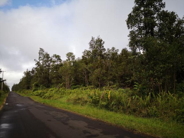 Address Not Published, Mountain View, HI 96771 (MLS #624076) :: Aloha Kona Realty, Inc.