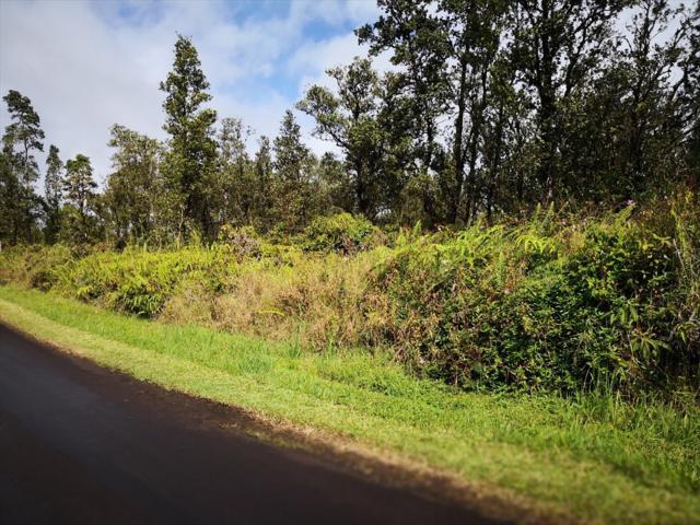 Address Not Published, Mountain View, HI 96771 (MLS #624078) :: Aloha Kona Realty, Inc.