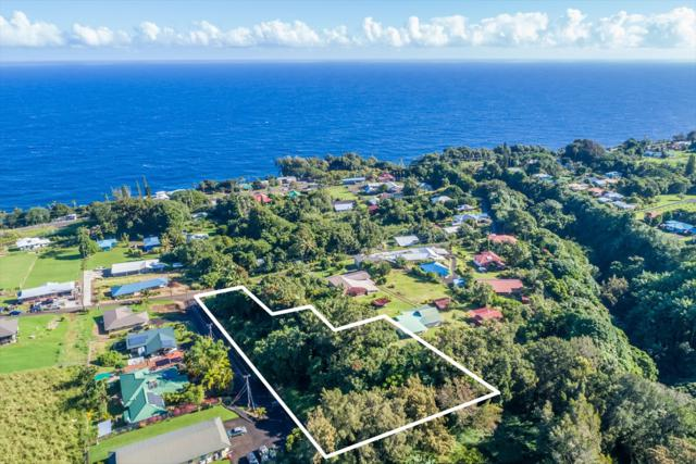 000000, Laupahoehoe, HI 96764 (MLS #624152) :: Song Team | LUVA Real Estate