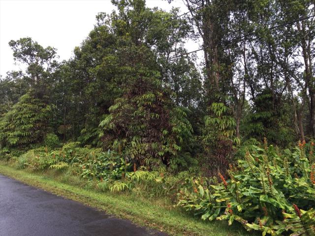 Address Not Published, Volcano, HI 96785 (MLS #624210) :: Elite Pacific Properties