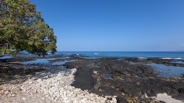 69-1811 Puako Beach Dr, Kamuela, HI 96743 (MLS #624293) :: Oceanfront Sotheby's International Realty