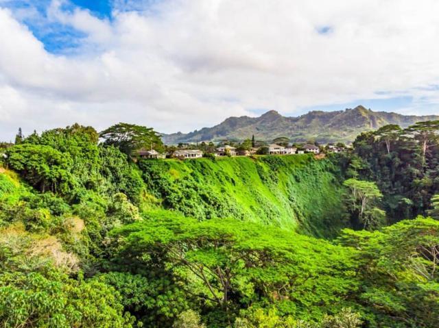 164 Lihau St, Kapaa, HI 96746 (MLS #624415) :: Kauai Real Estate Group