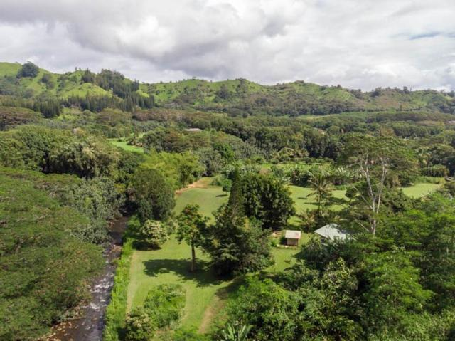 1741-D Aumoe Rd, Kapaa, HI 96746 (MLS #624426) :: Kauai Real Estate Group