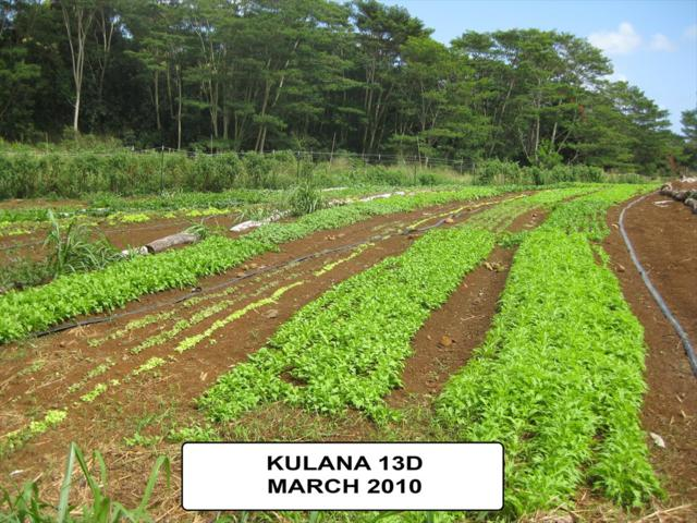 Address Not Published, Kapaa, HI 96746 (MLS #624455) :: Kauai Real Estate Group