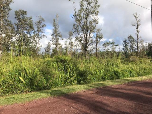 Bamboo Dr, Pahoa, HI 96778 (MLS #624604) :: Oceanfront Sotheby's International Realty