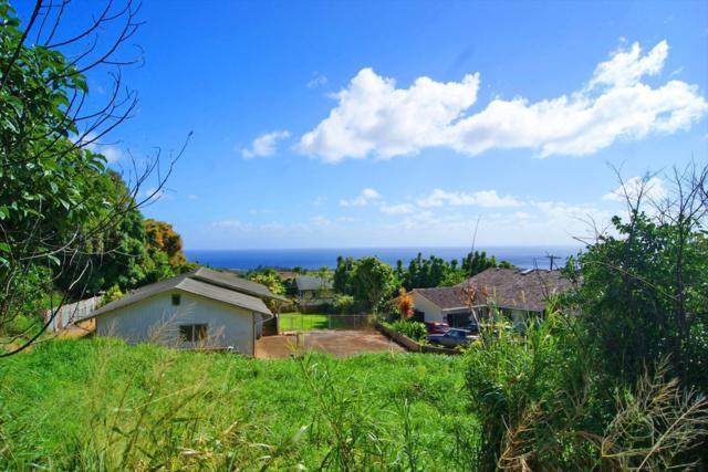 3564 Kaloke Rd, Kalaheo, HI 96741 (MLS #624653) :: Kauai Real Estate Group