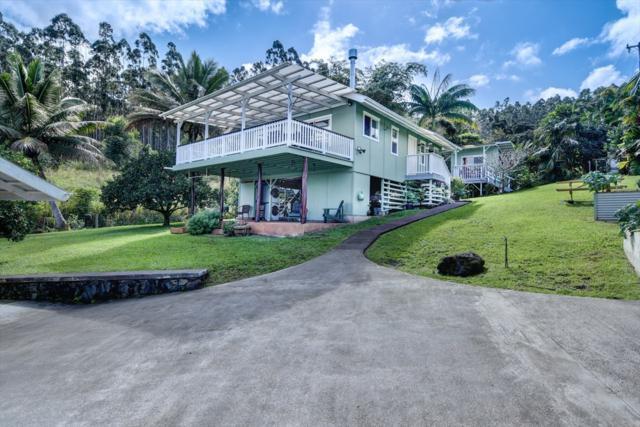 36-1069 Jardine Rd, Laupahoehoe, HI 96764 (MLS #624664) :: Aloha Kona Realty, Inc.