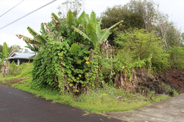 Kaniela Rd, Mountain View, HI 96771 (MLS #624671) :: Aloha Kona Realty, Inc.