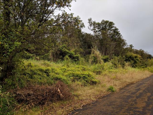 Hinuhinu St, Volcano, HI 96785 (MLS #624673) :: Aloha Kona Realty, Inc.