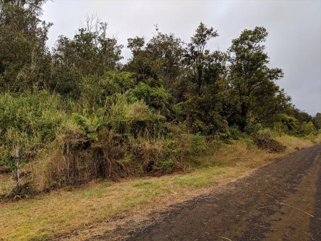 Hinuhinu St, Volcano, HI 96785 (MLS #624674) :: Aloha Kona Realty, Inc.