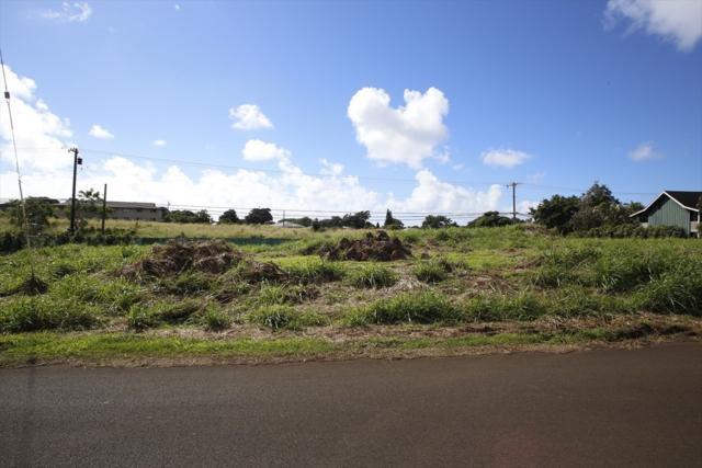 3259 Waoke St, Koloa, HI 96756 (MLS #624722) :: Aloha Kona Realty, Inc.