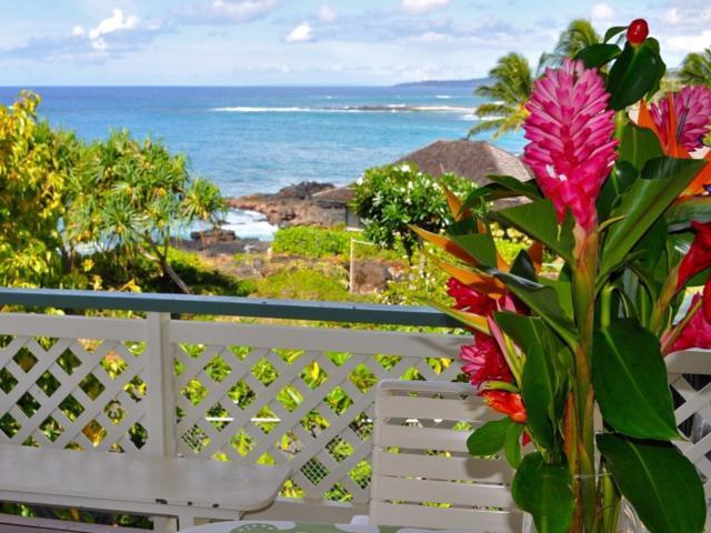 1791 Pee Rd, Koloa, HI 96756 (MLS #624851) :: Kauai Exclusive Realty